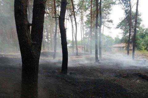 В Полтавской области за сутки потушили два лесных пожара