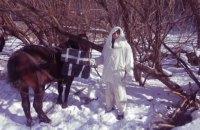 На границе с Румынией задержали трех лошадей с контрабандными сигаретами
