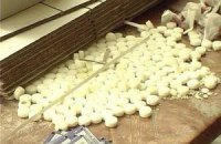 Под Харьковом обнаружен цех с опасными ядами