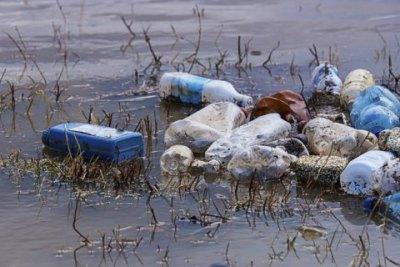 """З Рахова до ЄС: як зупинити """"контрабанду"""" сміття на Закарпатті"""