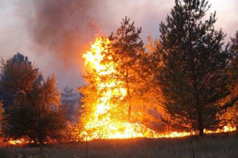 На Луганщине ликвидированы 116 из 146 очагов пожаров (обновлено)