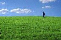 На реализацию экологической программы в Днепропетровской области потратят 11 млн грн