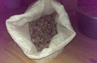 В Ровенской области задержали скупщика янтаря с камнями на 2 млн гривен