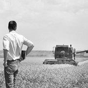 «Батьківщина» vs VoxUkraine: чому сьогодні не варто продавати землю