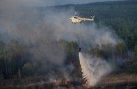В Чернобыльской зоне горит 20 га травяного настила
