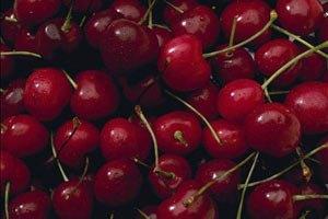 Черешня не подешевеет до появления персиков