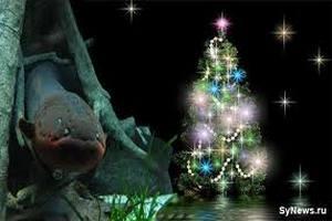 Каждый пятый немец отказался от рождественской елки
