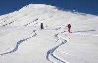 Троє лижників загинули під лавиною в Австрії