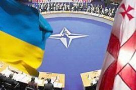 США: Поцесс вступления Грузии и Украины в НАТО займет годы