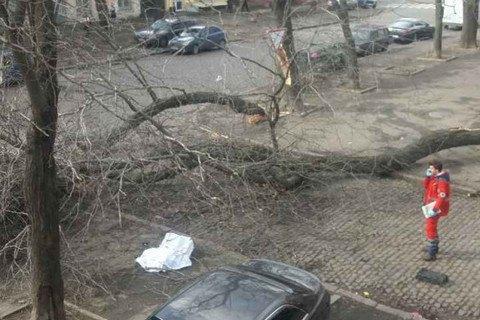 В результате урагана в Одессе погибла женщина