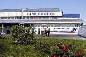 В симферопольском аэропорту обнаружили контрабандных воробьев