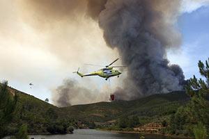 На північному сході Іспанії вирують лісові пожежі
