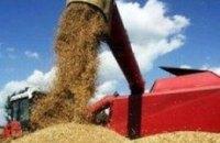 Зернотрейдеры прекратили закупку украинской пшеницы