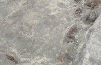 В Полтавской области на раскопках нашли скифское золото и оружие