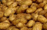 Росія вводить заборону на ввезення продовольчої картоплі з України