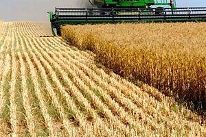 В Одесской области собрали 97% урожая