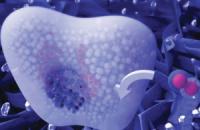 Ученые разработали сенсор для определения уровня глюкозы по слюне и слезам