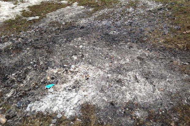 Пепел от сожженных документов на территории Межигорья