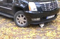 Одесситку оштрафовали на 3,6 млн гривен за нерастаможенный Cadillac