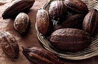 Ціни на какао сягнули максимуму за 10 місяців