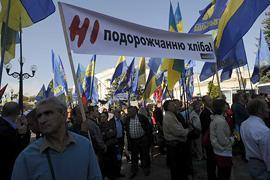 Завтра «Батькивщина» соберется под мэрией Киева