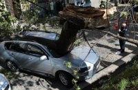 В центре Львова дерево раздавило автомобиль депутата