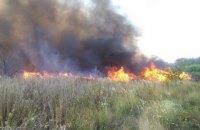 При пожаре сухой травы под Александрией пострадали четверо подростков