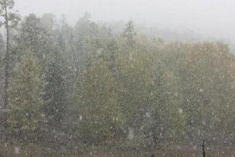 В Карпатах выпадет снег