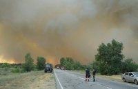 В Херсонской области начался лесной пожар