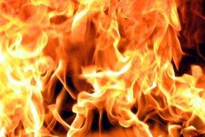 В Киеве из-за пожара в ветклинике погибло пять животных