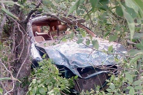Голова району Донецької області загинув у ДТП