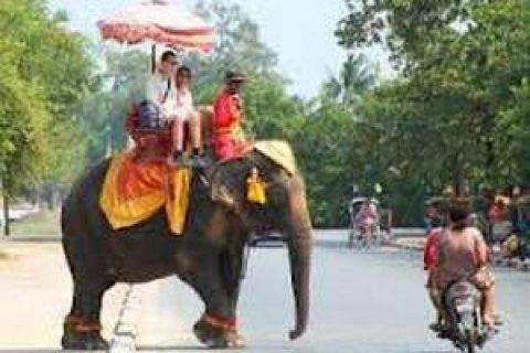 Таиланд продлил бесплатное оформление виз до сентября