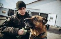 Нацгвардія закупила новий транспорт для службових собак