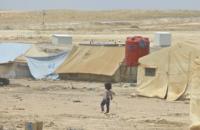 130 тис. сирійців стали біженцями через військову операцію Туреччини, - ООН