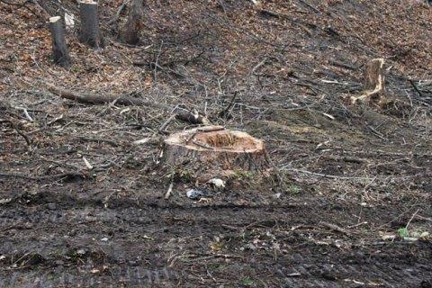 У Порошенка підтвердили підготовку законопроекту про експорт лісу