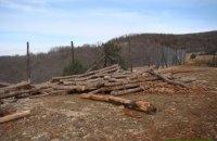 Луценко потребовал от прокуроров на местах не допустить вырубки леса