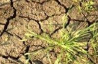 Сильнейшая засуха в Китае оставила без воды 200 тыс. человек
