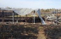 В Киевской области сгорел приют для собак