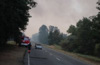 У пожежі в херсонських лісах підозрюють пастуха