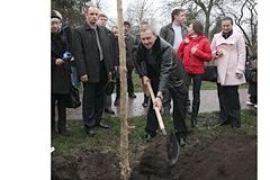 Черновецкий посадил дерево на Алее журналистов