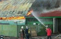 У Києві на Бортничах згоріла нелегальна СТО