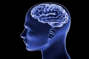 Диета заставляет пожирать собственный мозг, установили американские ученые