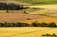 Кабмін схвалив законопроєкт про скасування права на безкоштовні 2 гектари землі