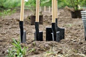Госземагентство предлагает раскрыть данные о владельцах земли