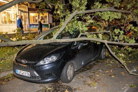 "В Германии ураган ""Ксавьер"" унес жизни шести человек"