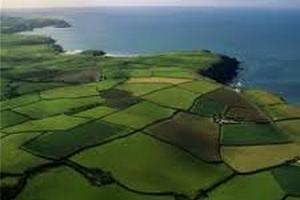 Рада хоче розширити список покупців несільськогосподарської землі
