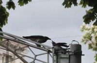 У вівторок у Києві до +21, удень без опадів