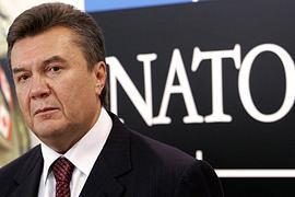 Янукович: отношения с НАТО - комфортные