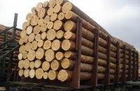 Рада приняла в первом чтении законопроект в поддержку моратория на экспорт леса