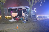 В Венгрии автобус с украинцами врезался в дерево, 10 пострадавших
